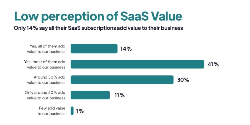 Report: 14% of decision-makers feel all SaaS subscriptions benefit their business